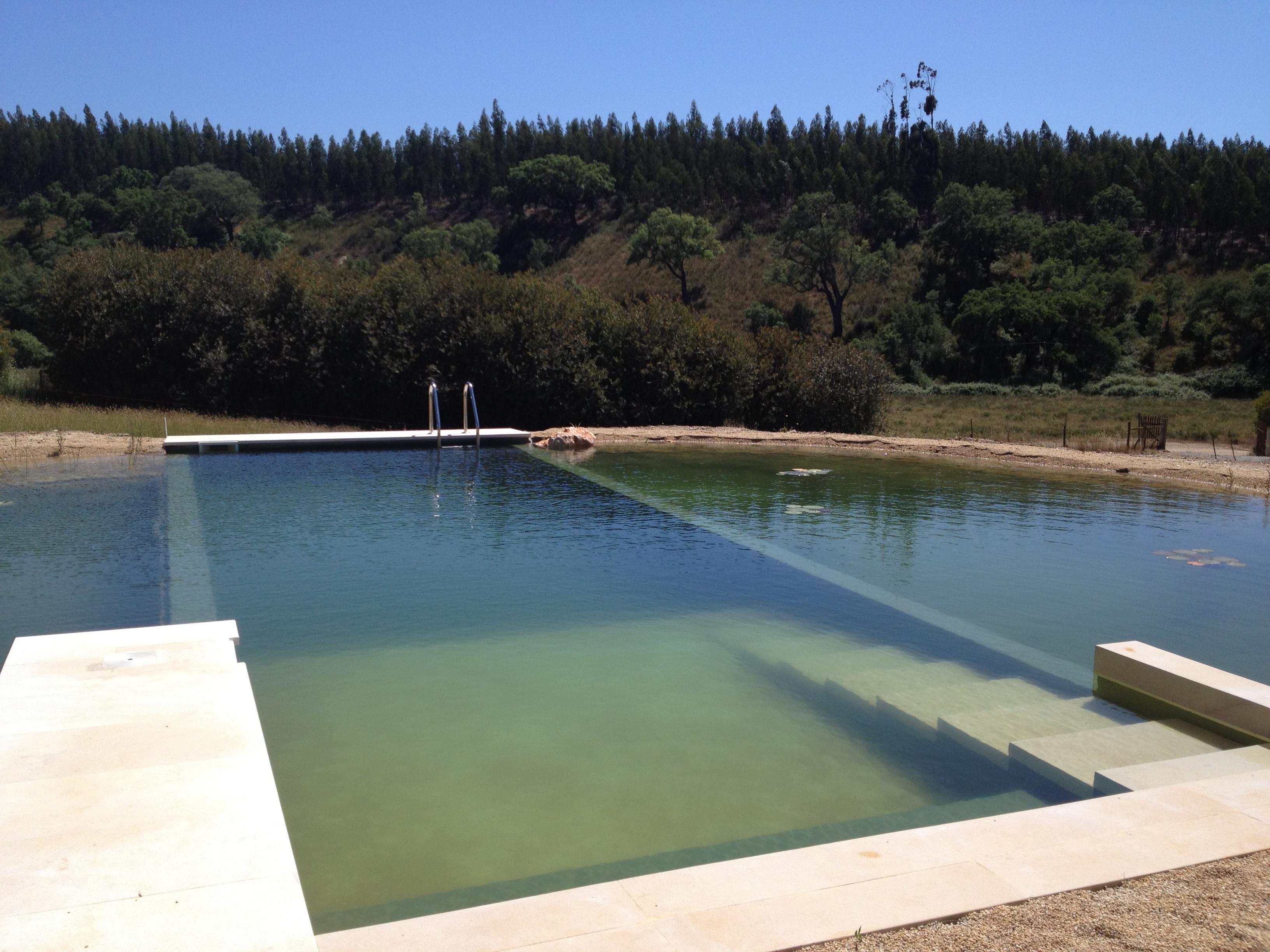 Transform a tank into a bio pool piscinas biol gicas for Piscinas biologicas