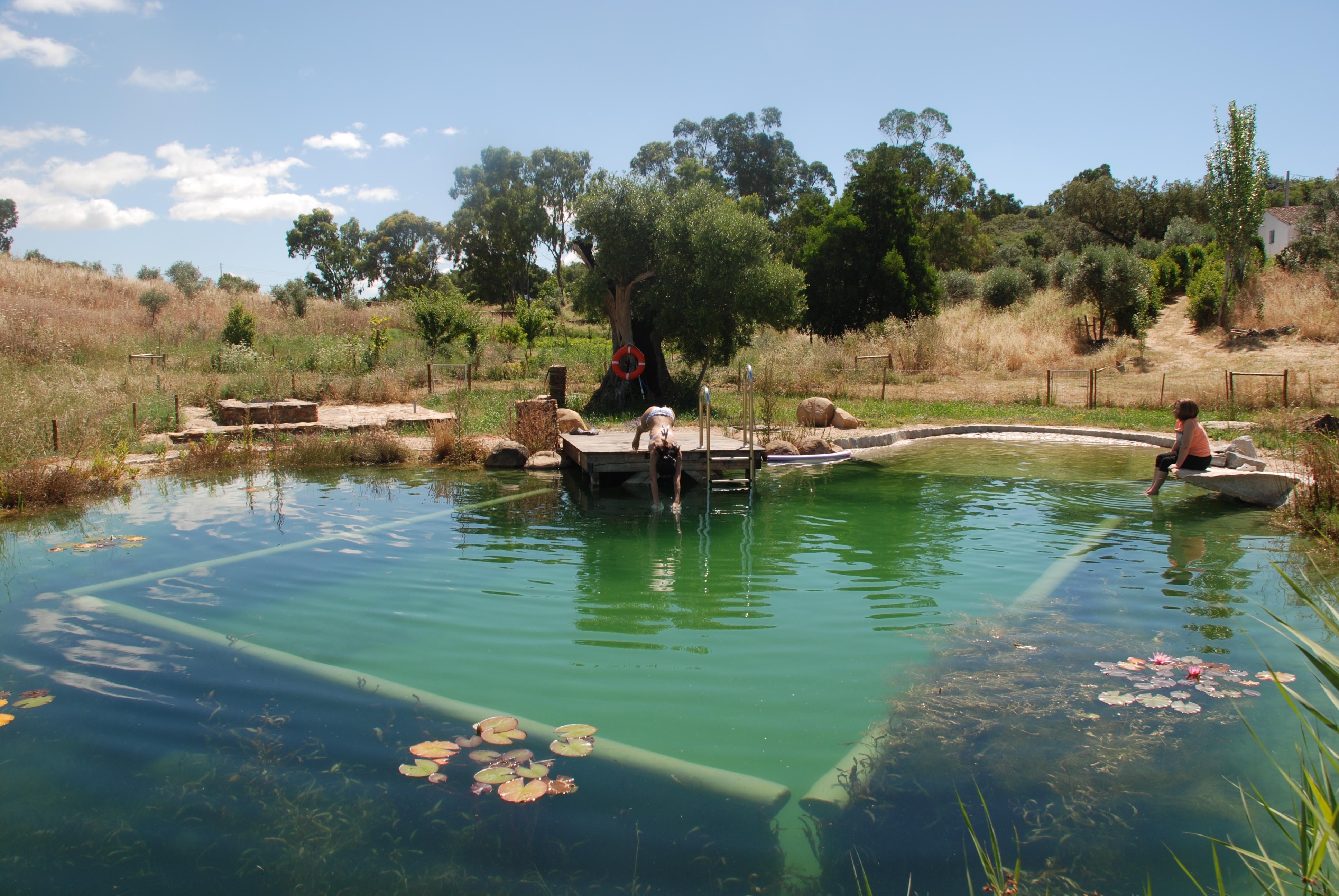 Gallery piscinas biol gicas for Piscinas biologicas