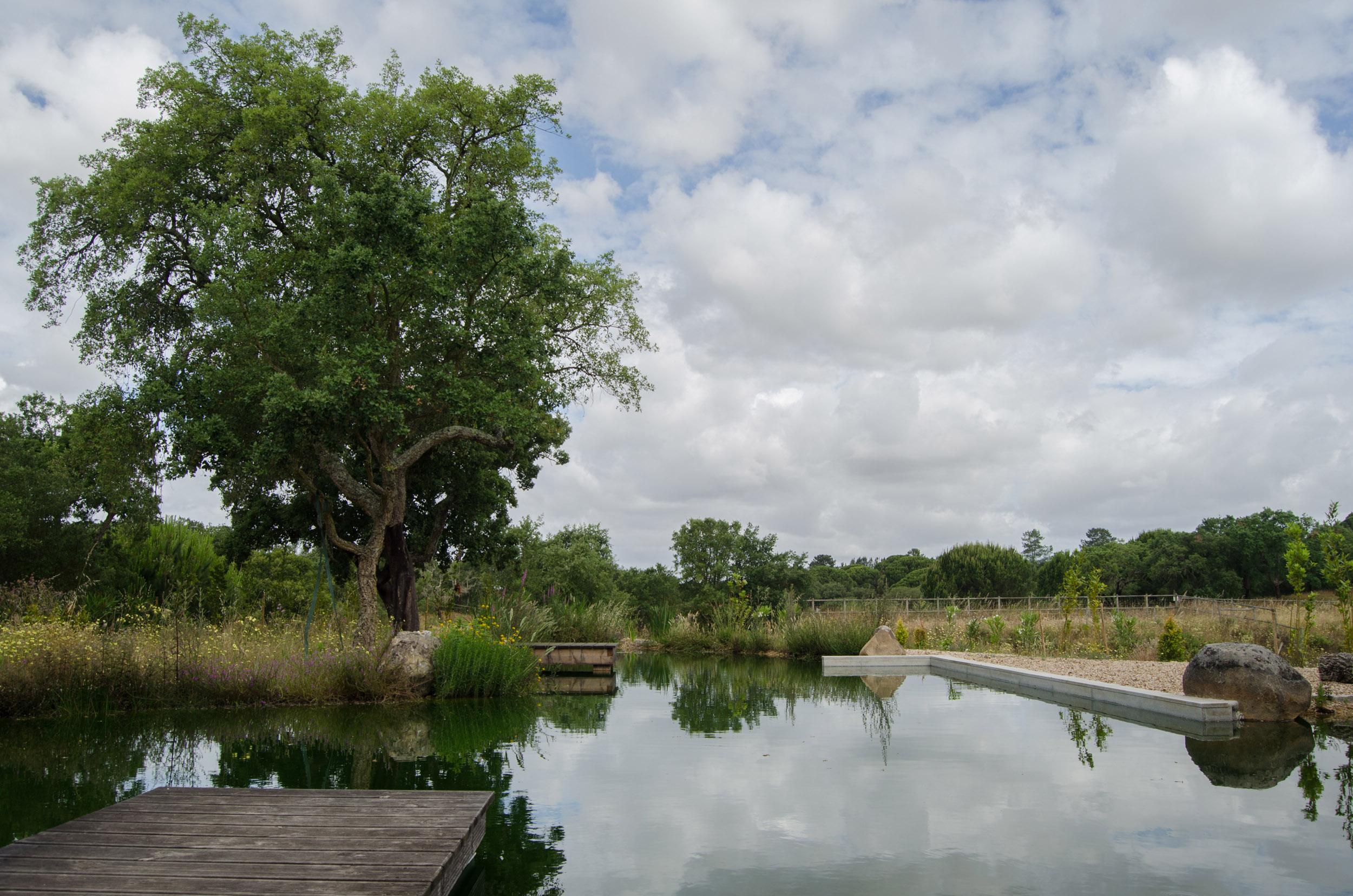 Benavente piscinas biol gicas for Piscinas benavente