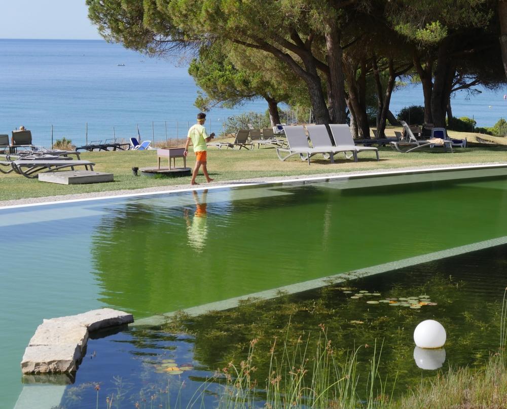 Piscinas e nadadores salvadores piscinas biol gicas for Piscinas biologicas
