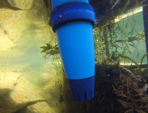 Sinais da qualidade de água