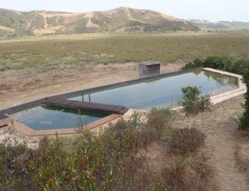 Renovação de piscinas biológicas